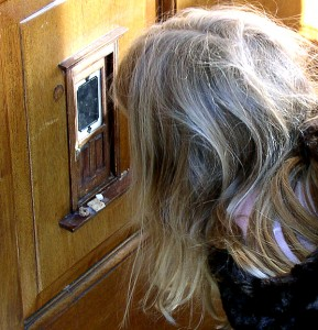 Lakewood Elementary kindergarteners take a field trip to see the fairy doors of Ann Arbor.