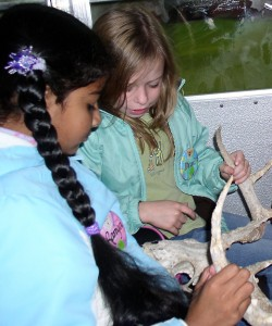 – Lakewood Elementary School fourth-graders look at a set of antlers as part of their environmental studies. Here, they are on a field trip to Waterloo State Recreation Area.