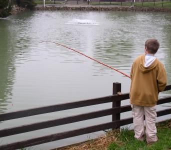 Pittsfield at fish farm