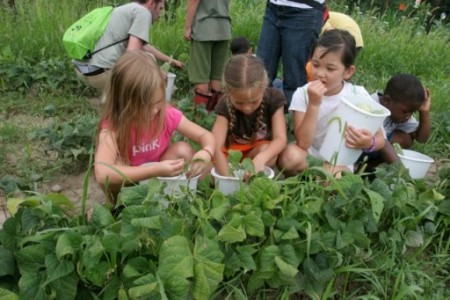 Students last year enjoy the outdoors while working at the King Learning Garden.