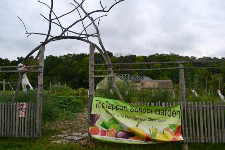 The Tappan School Garden will also be featured on the Sept. 20 garden tour. Photo by Jo Mathis.