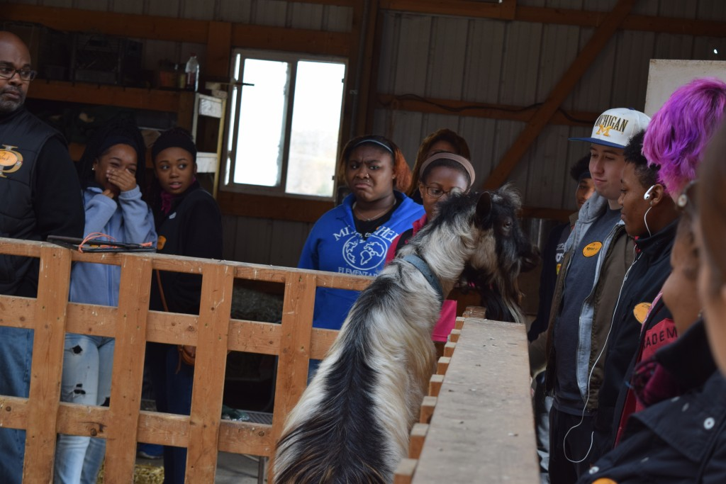 One of the goats at Cornman Farms gets friendly with Pathways students.