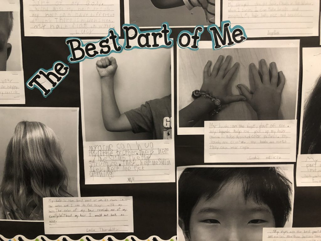 Diverse student body essay